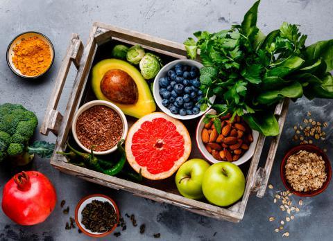 Fuentes alimenticias